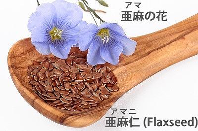 アマの花 スプーンの亜麻仁