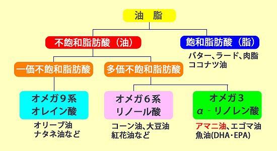 油脂の種類