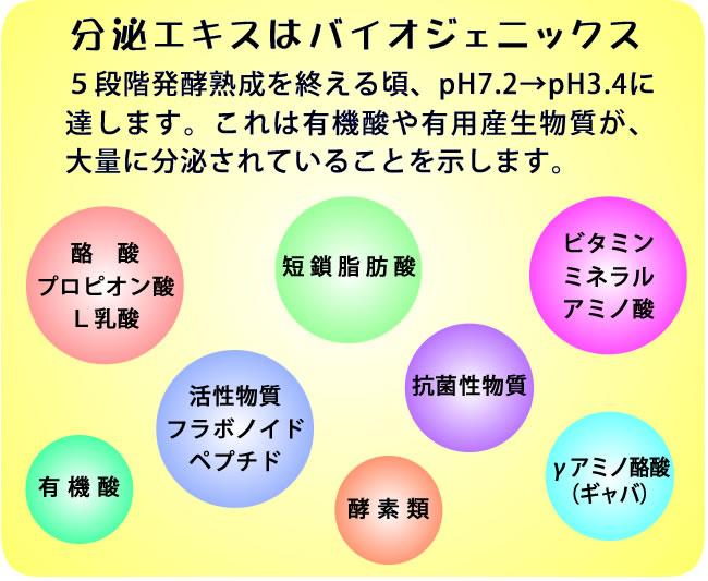 分泌エキスはバイオジェニックス 5段階発酵熟成を終える頃、pH7.2→pH3.4に達します。これは有機酸や有用産生物質が、大量に分泌されていることを示します。酪酸、プロピオン酸、L乳酸、短鎖脂肪酸、活性物質(フラボノイド・ペプチド)、有機酸、酵素類、抗菌性物質、ビタミン、ミネラル、アミノ酸、γアミノ酸(ギャバ)