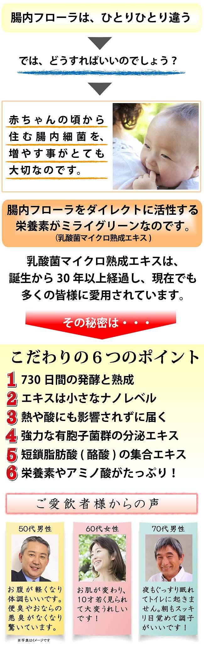 ミライグリーン4-2